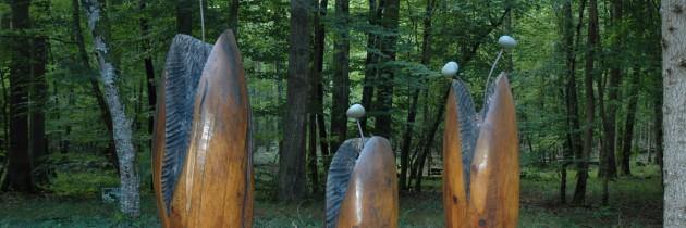 Forest Art Tronçais