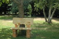 pied_mon_arbre_60138