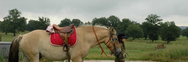 accueil cavaliers chevaux
