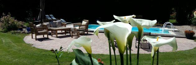 grange floriejean piscine Braize