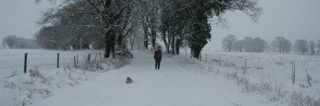 randonnée dans la neige à Tronçais