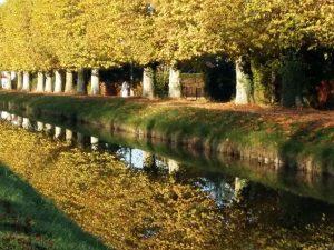canal de berry Grange floriejean