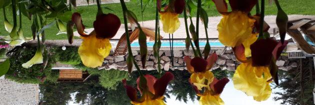 grange floriejean chambres d'hôtes avec piscine spa A71